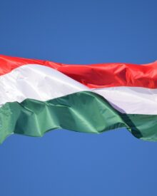 Polak, Węgier dwa bratanki
